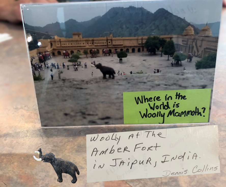Where In The World Is Wolly Mammoth - Gift Shop Campaign - Museum of the Middle Appalachians - Saltville, VA