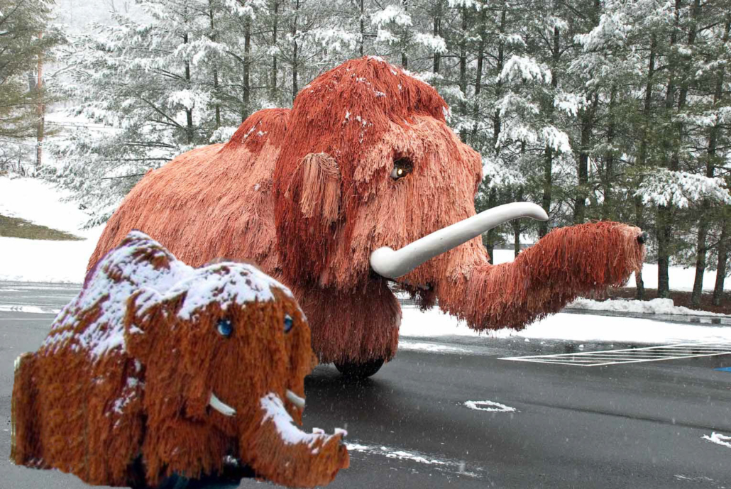 Wooly and Salty in the snow - Museum of the Middle Appalachians - Saltville, VA